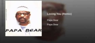 Loving You (Remix)